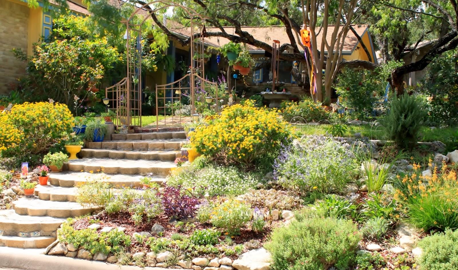 RockOakDeer San Antonio Watersaver Landscape Tour Garden on
