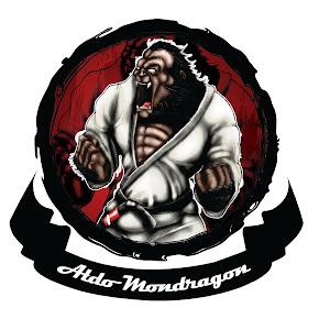 ALDO MONDRAGON