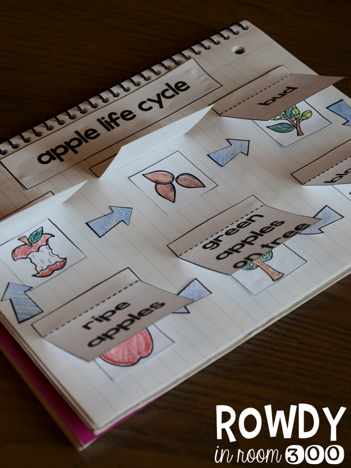 http://www.teacherspayteachers.com/Product/Apples-For-Everyone-Reading-Math-and-Interactive-Notebooking-1458449