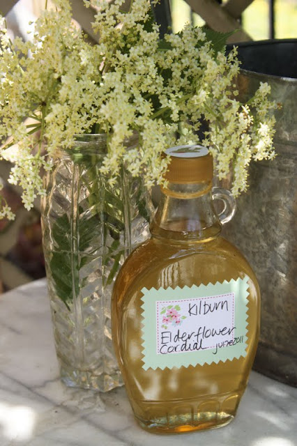 Elderflower Cordial recipe