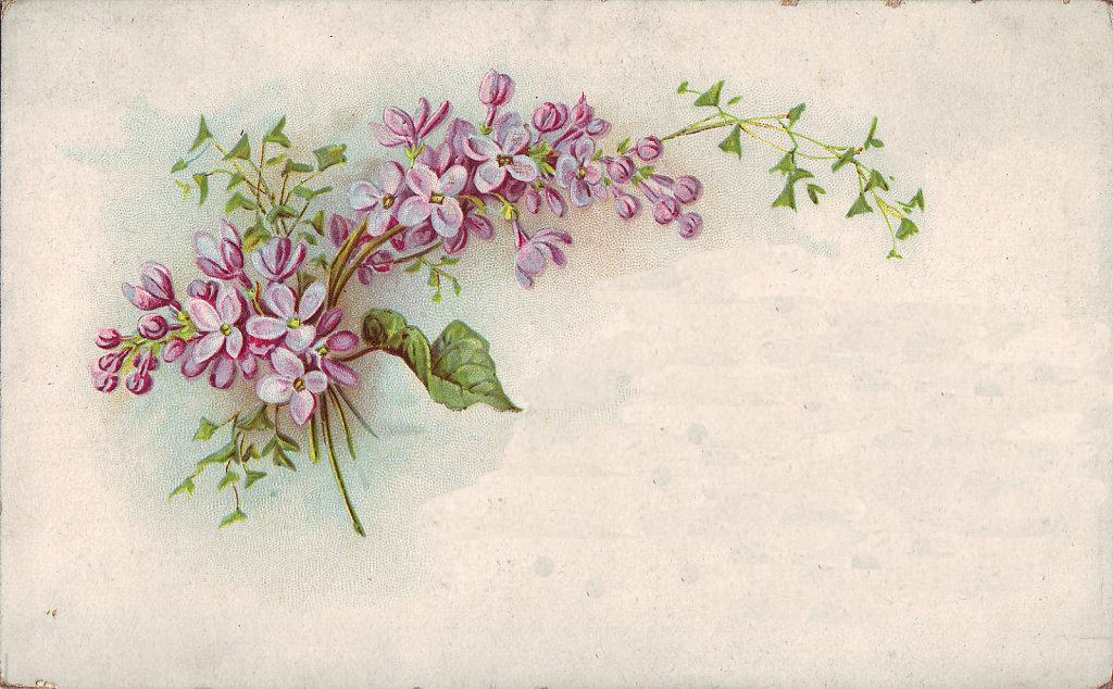 http://1.bp.blogspot.com/-aUvTMZsU1ko/UmOrkT-zGlI/AAAAAAAABi8/5LrAAg7GOg4/w1024-h634-no/violets.png