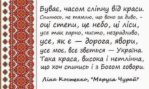 Украина празднует День Независимости - Цензор.НЕТ 9214
