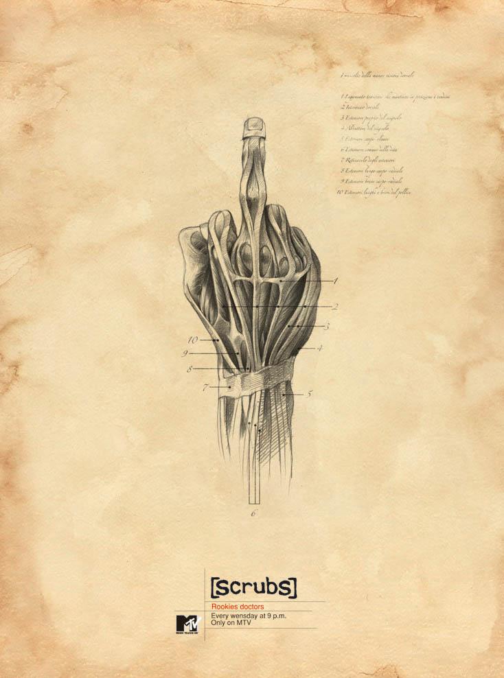 LA CIENCIA DE LA VIDA: Anatomía interna en carteles de anuncios de TV