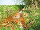 Foto cover Verkenning grondwaterkwaliteit in Natte Natuurparels in het beheergebied van waterschap Aa en Maas