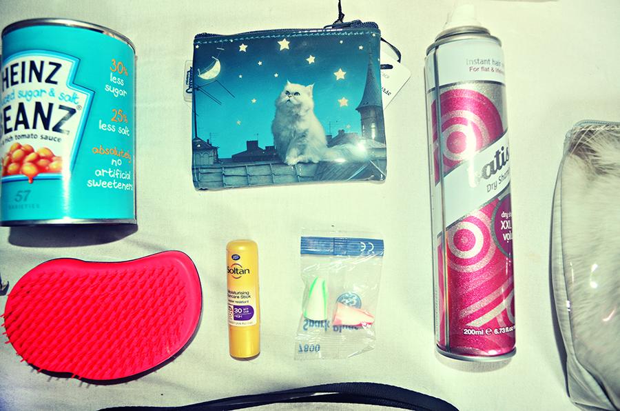 Batisse, catseye coin purse, tangle teezer, moldex ear plugs, soltane, festivals, leeds, supplies, essentials