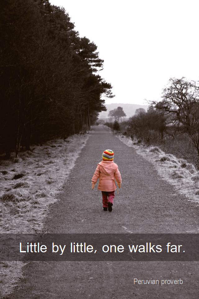 visual quote - image quotation for PROGRESS - Little by little, one walks far. - Peruvian proverb