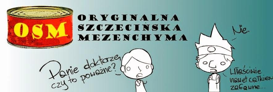 Oryginalna Szczecińska Mezenchyma