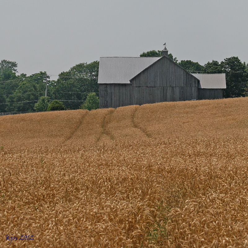 The Outskirts Of Suburbia: The Barn Just Over The Hill