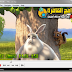 Download K-Lite Codec Pack 9.50 Full برنامج كودك لتشغيل جميع صيغ الملتيميديا