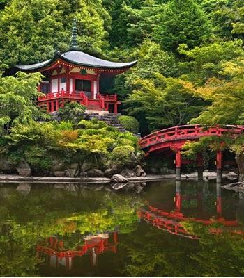 Sakura apyc cantabria el jardin del rey for Jardin umbrio