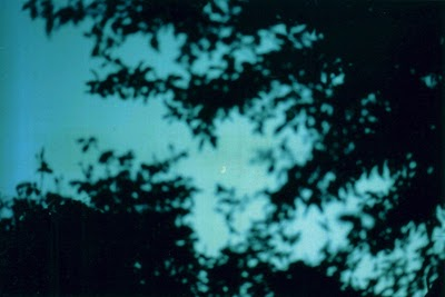 http://tobyharvard.tumblr.com/post/65602393181/http-tobyharvard-tumblr-com