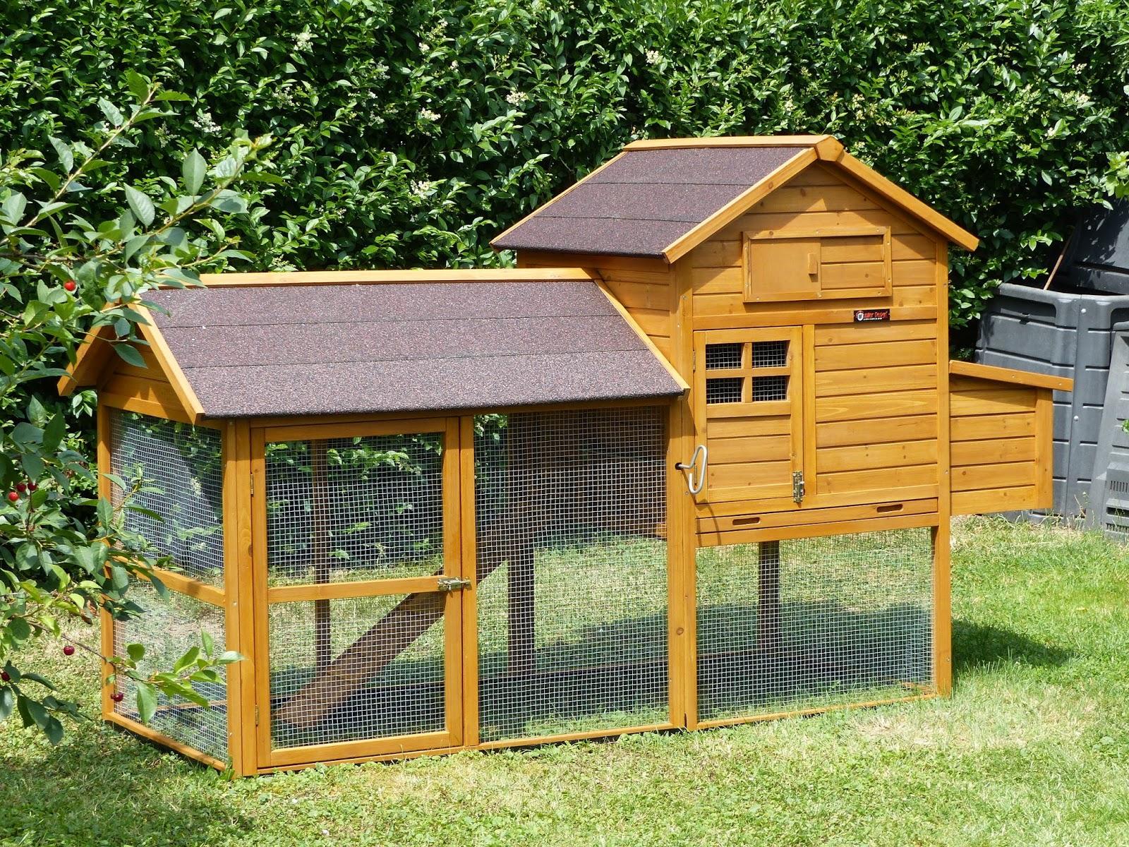 papi fait son blog comment promener ses poules. Black Bedroom Furniture Sets. Home Design Ideas