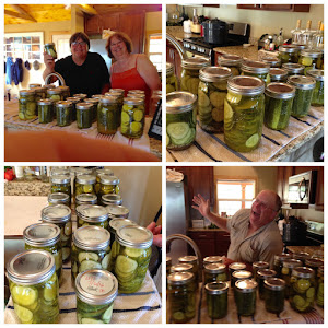 12 quarts and 8 pints of dill pickles!