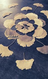 http://1.bp.blogspot.com/-aXk7uKw7lBo/UUWUdyKP4WI/AAAAAAAAD0Y/2D6bNVhbFDk/s640/mandala+hojas+secas+dried+leafs+getrocknete+bla%25CC%2588tter+kinder+nin%25CC%2583os+kids+craft+manualidad+basteln.jpg