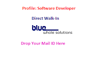 BlueWhale-Solutions-walkin-software-developer-chennai