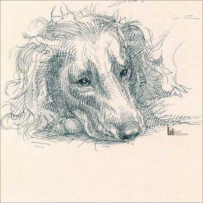 dessin animal chien