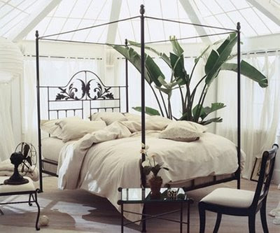 canopy bed against the - photo #8