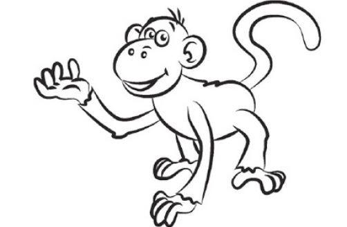 Картинки обезьяна черно белые
