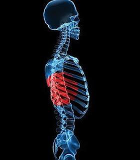 طريقة جديدة لإنتاج عظام البشر - هيكل عظمى