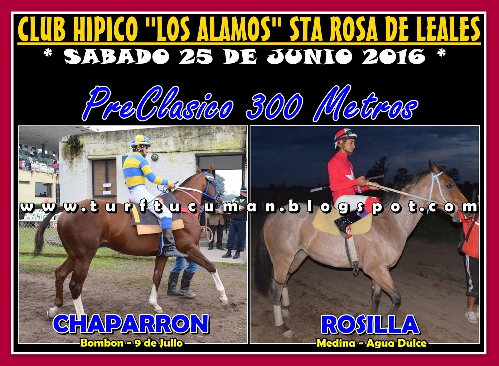 CHAPARRON VS ROSILLA