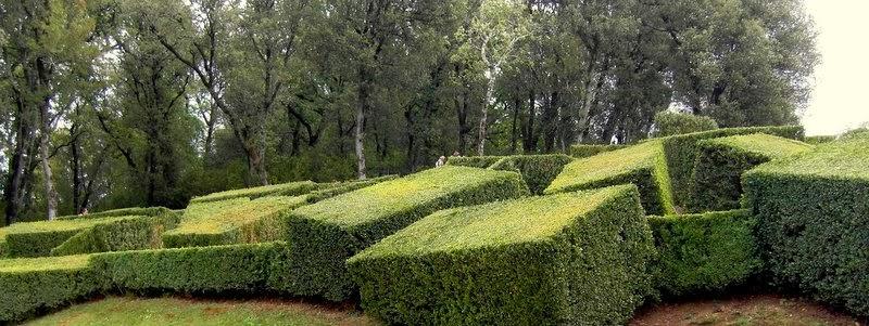 ... hage, men har du store traer og en stor hage er dette en g?yal