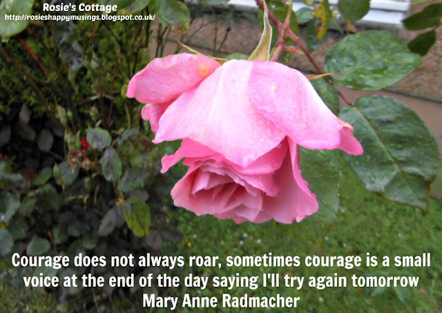 Blogtember 2015 Beautiful Mary Anne Radmacher quote