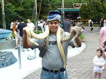 Giant snakes!!!