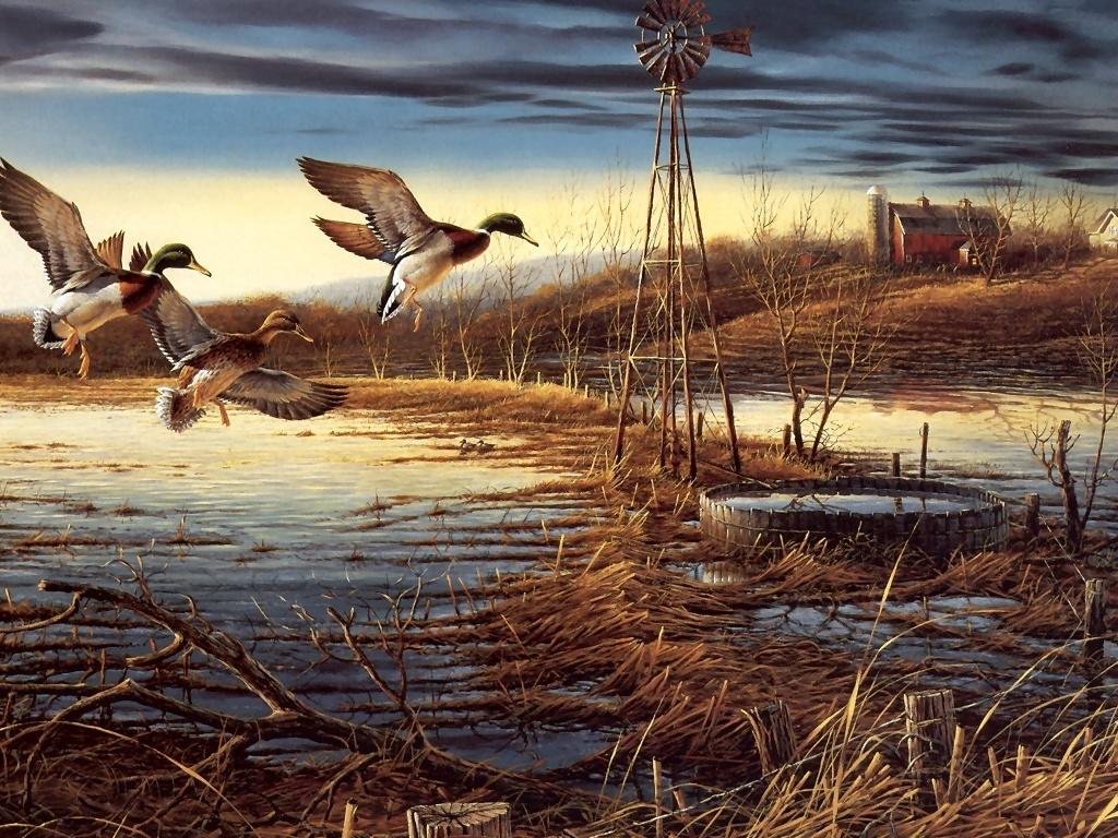 Wildlife Paintings Sale