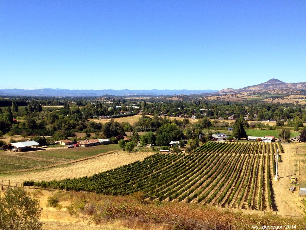 Trium Wines Tasting Room view