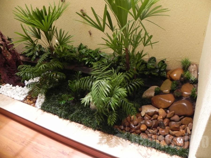 .habitissimo.com.br/photos/business/big/jardim-de-inverno_30622.jpg