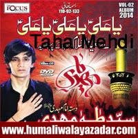http://ishqehaider.blogspot.com/2013/10/taha-mehdi-nohay-2014.html
