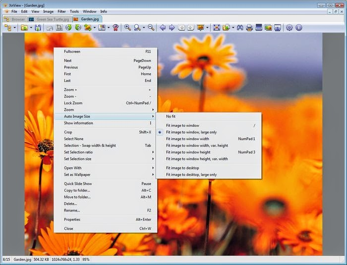 XnView v2.22 Complete Full İndir