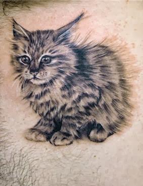Tatuagens Femininas de Gato