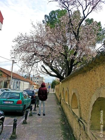 Закоулок в Подгорице