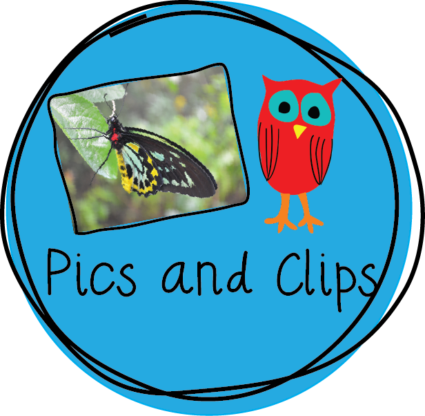 Clip Art and Pictures