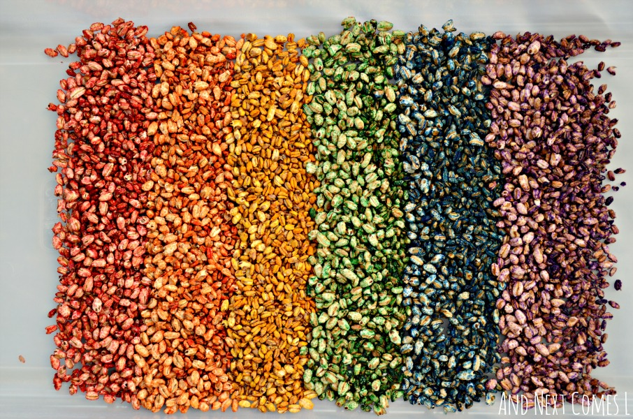 Rainbow dyed puffed wheat cereal sensory play for kids from And Next Comes L
