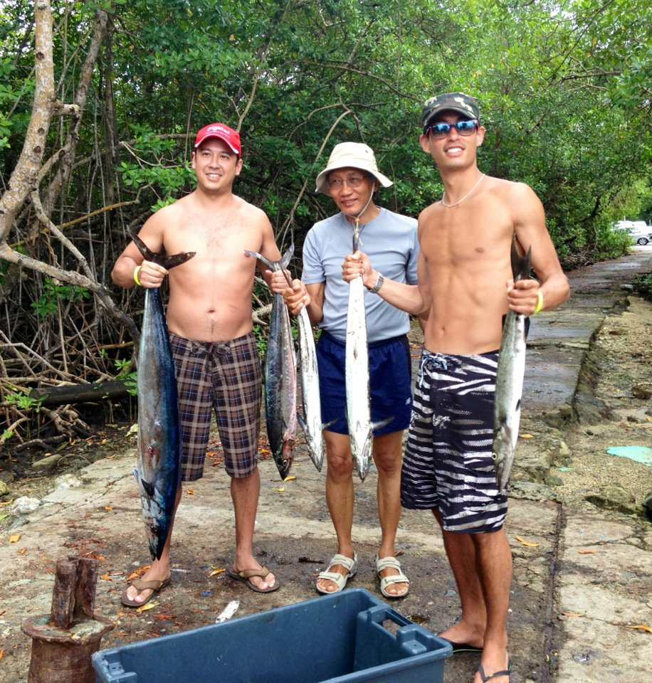 how to catch a barracuda on fishing kings