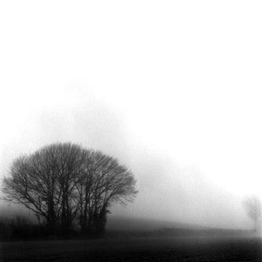 Une matinée brumeuse