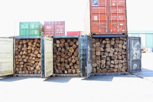 Phong tỏa 11 container nghi là gỗ lậu ở cảng Sài Gòn