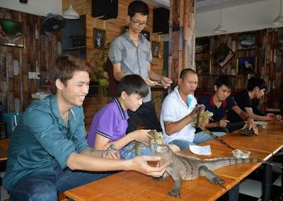 Hình 2: Phong trào chơi bò sát - thú cưng đang phát triển mạnh ở Buôn Ma Thuột