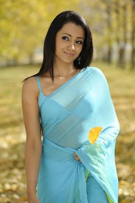Trisha Cute In Blue Transparent Saree Photos