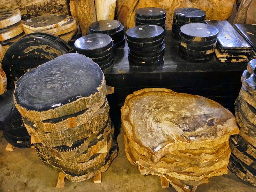 Petrified wood rounds indogemstone for Petrified wood furniture for sale