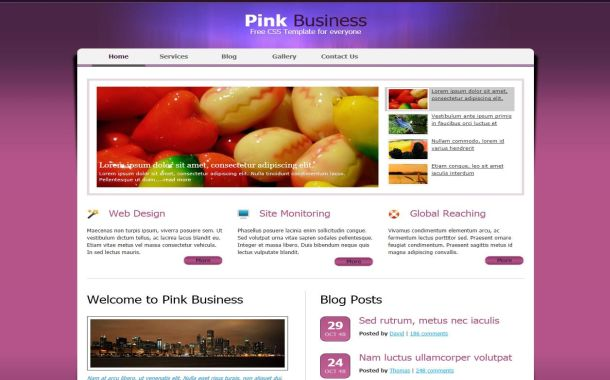 Free Pink Purple Colorful CSS Website Template