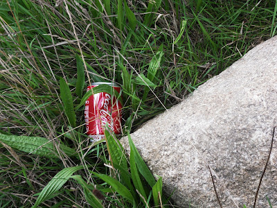 Coca-Cola tin left as rubbish or trash