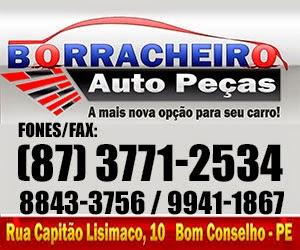 BORRACHEIRO AUTO PEÇAS