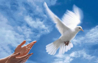 HÓA CHẤT XỬ LÝ NƯỚC, NaOH(XÚT), PAC (CHẤT TRỢ LẮNG), HẠT NHỰA ANION, CATION