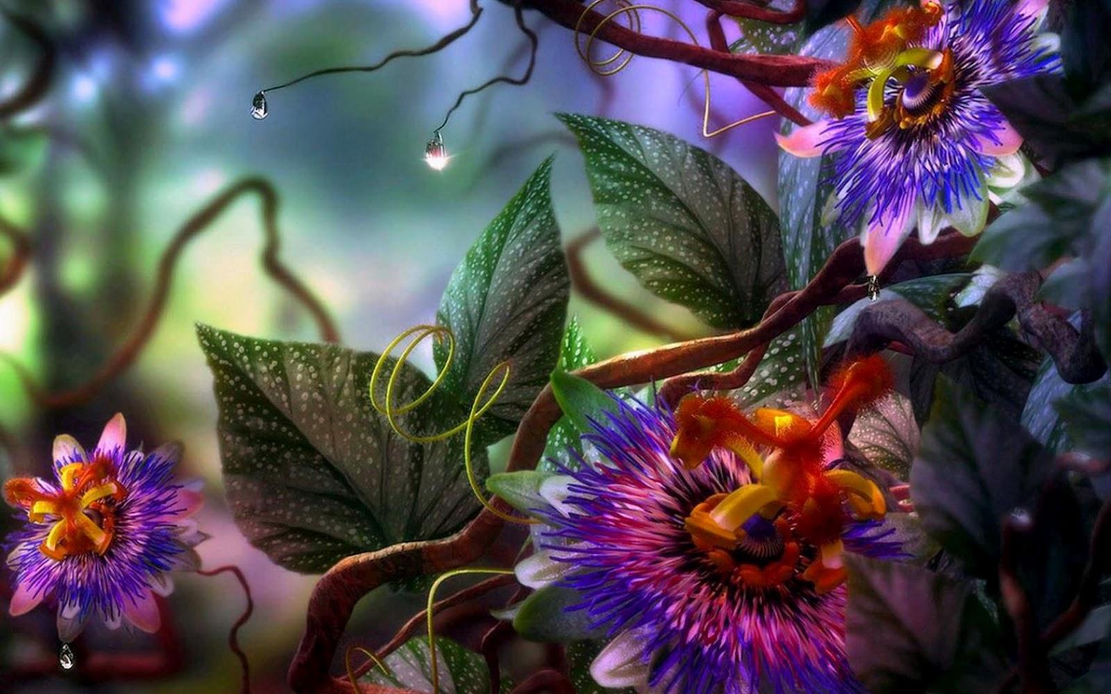 Imagenes Flores Exoticas Gratis - fondos de pantalla de flores exoticas Mymadrid me