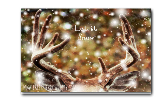 Deer antler Christmas card. You can purchase and download our photography creations and instantly print at home from our Paper Meadows Photography Shop on ETSY. To Visit our shop now click here.