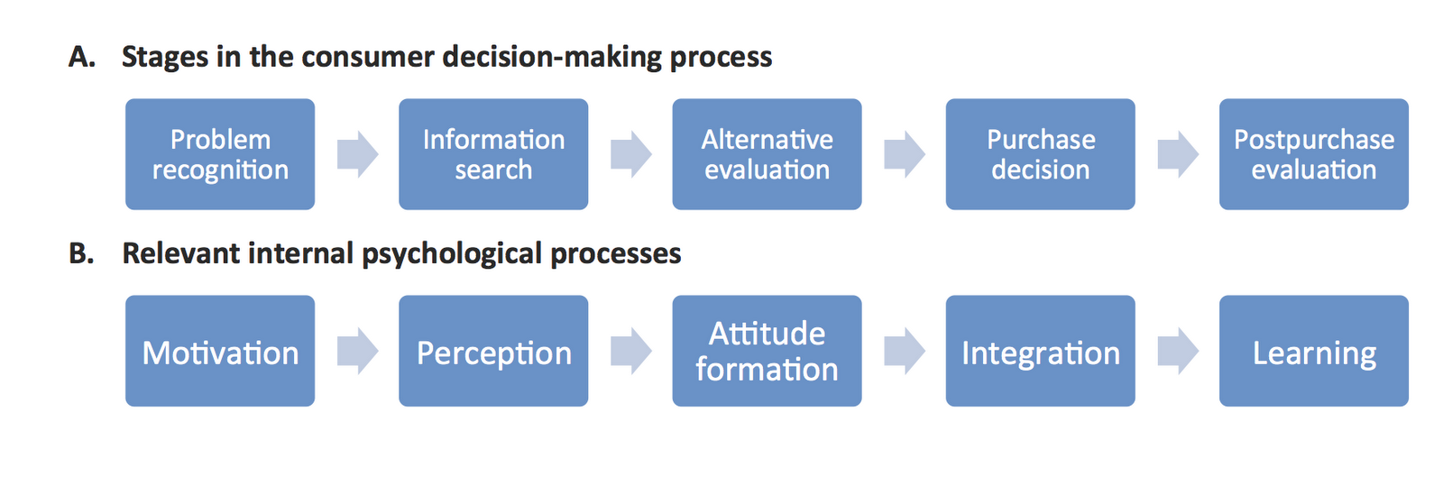 buyer behavior typical decision making processes