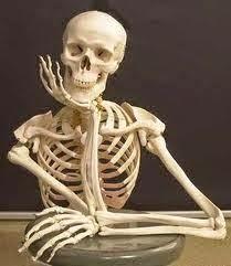 esqueleto_sentado_grande.jpg